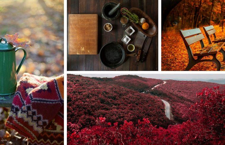Arome de weekend #3: Accente tomnatice de culoare