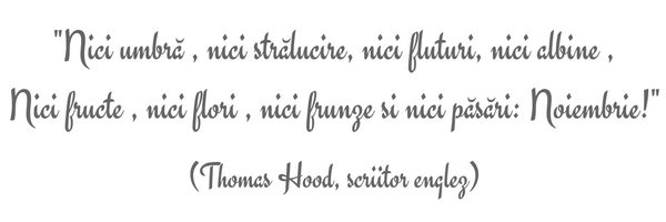 citat-thomas-hood