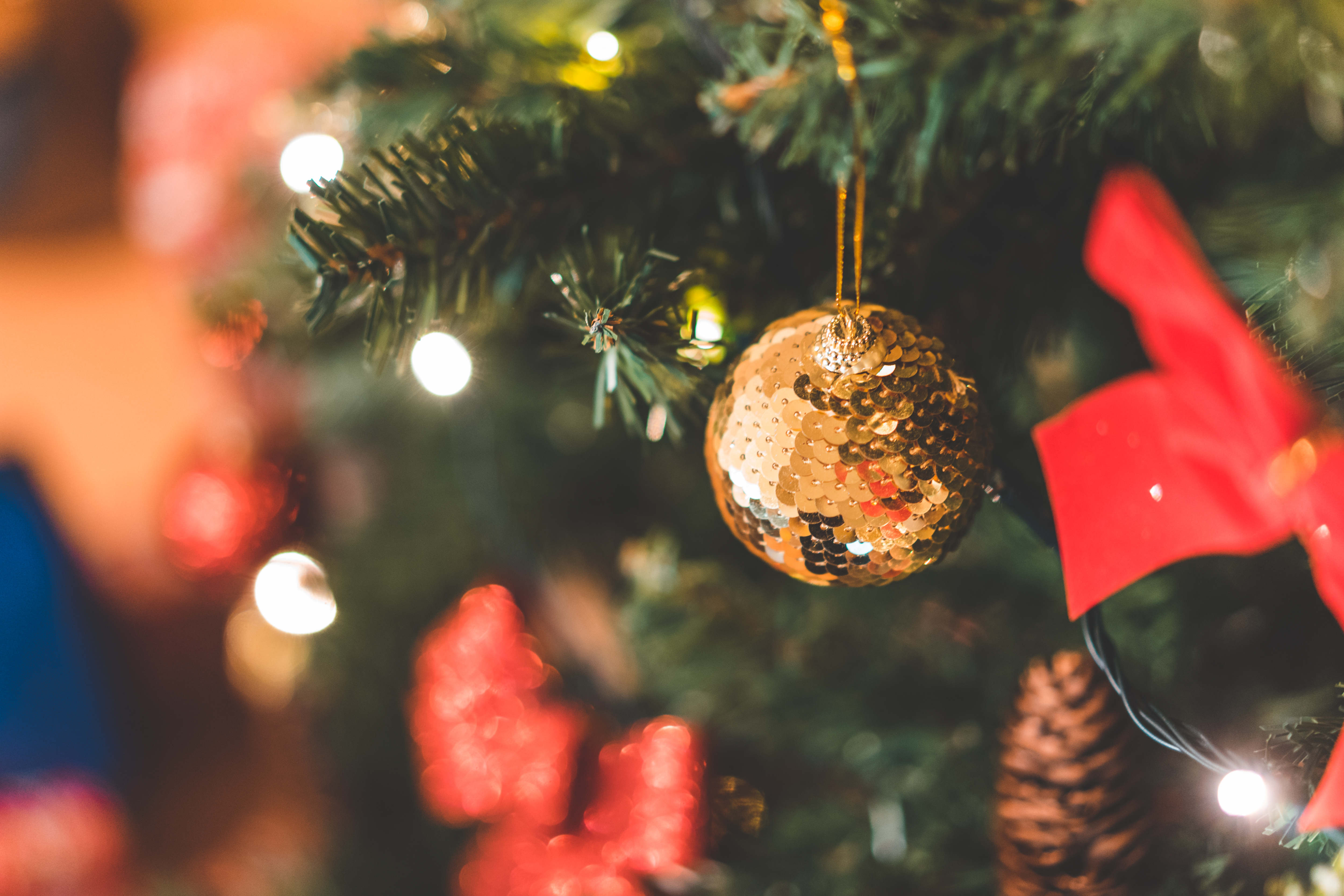 Bradul de Crăciun și-un tag de sărbători